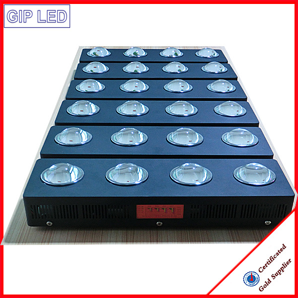 504W COB LED Grow Light for Medicine and Greenhouse pictures & photos