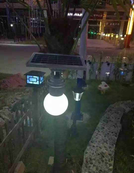 China 6w Ip65 Outdoor Solar Led Garden