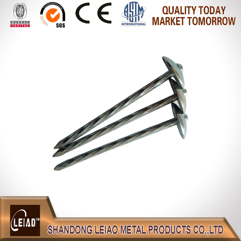 Best Quality Galvanized Roofing Nail with Umberlla Head