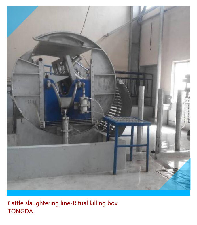 Cattle Slaughtering Equipment- Bleeding