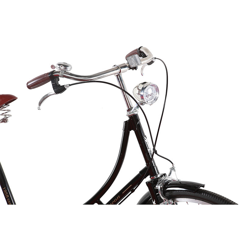 Classic Traditional Bicycle Women Retro Bike (FP-TRD-S01)