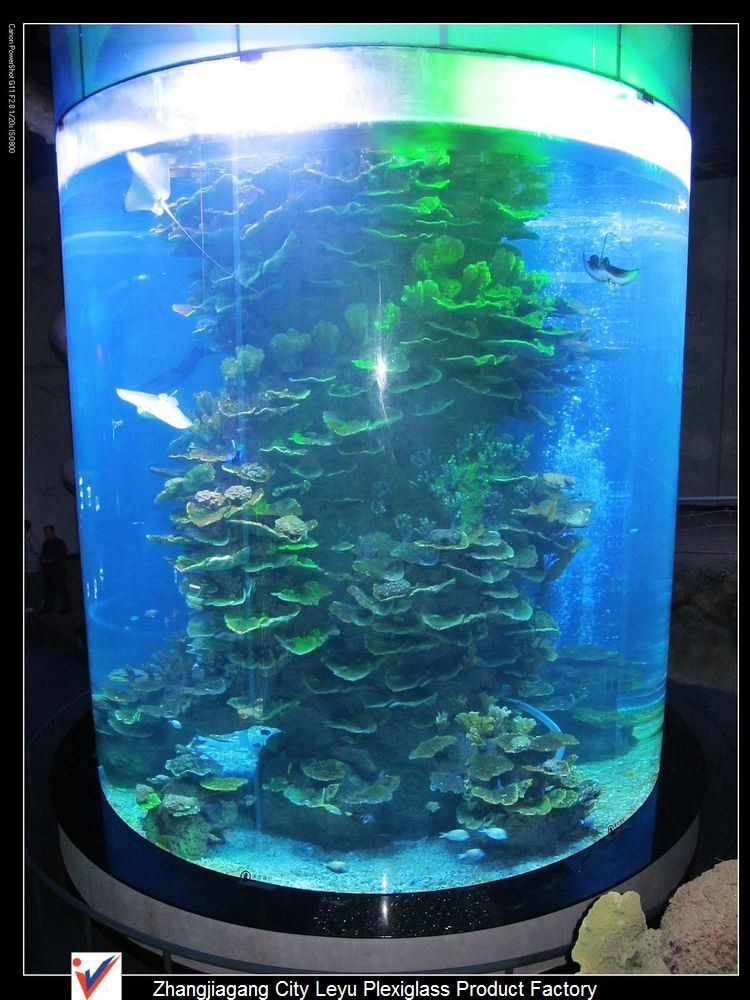 China Super Large Round Acrylic Fish Tanks China Acrylic Aquariums And Acrylic Fish Tanks Price