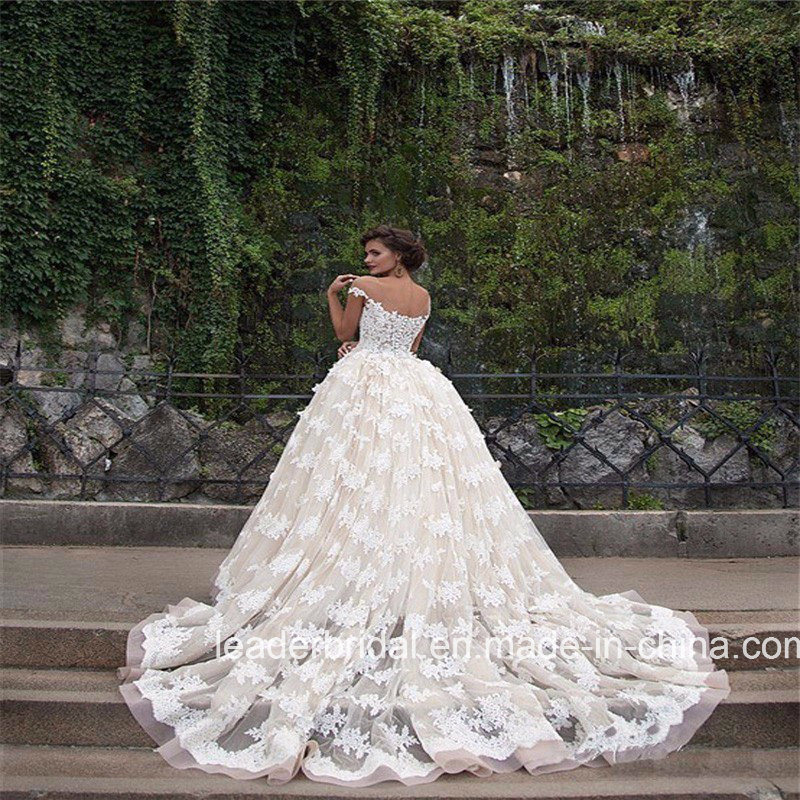 Sheer Lace Bridal Ball Gowns off Shoulder Champagne Lining Wedding Gown 2017 G1704 pictures & photos