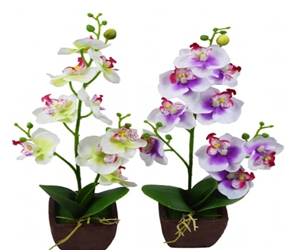 China 9 Head Mini Orchid Bonsai Forindoor Decoration In Wholesale In Yiwu China Artificial Bonsai And Artificial Orchid Price