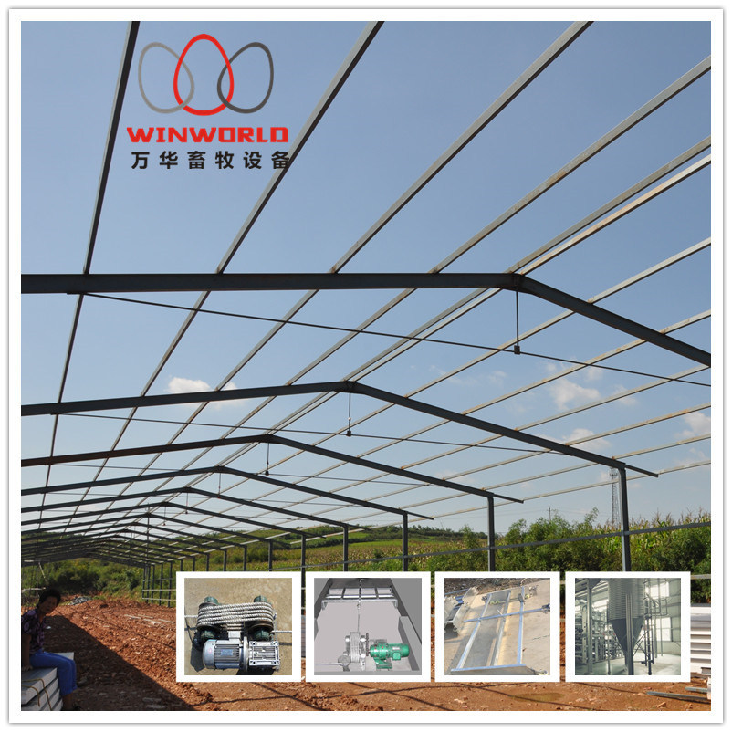 Automatic Poultry House Equipment with Low Price pictures & photos