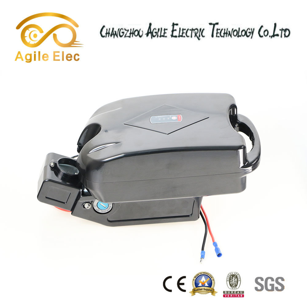 China 36V Frog Type Electric Bike Motor Battery with Controller Box ...