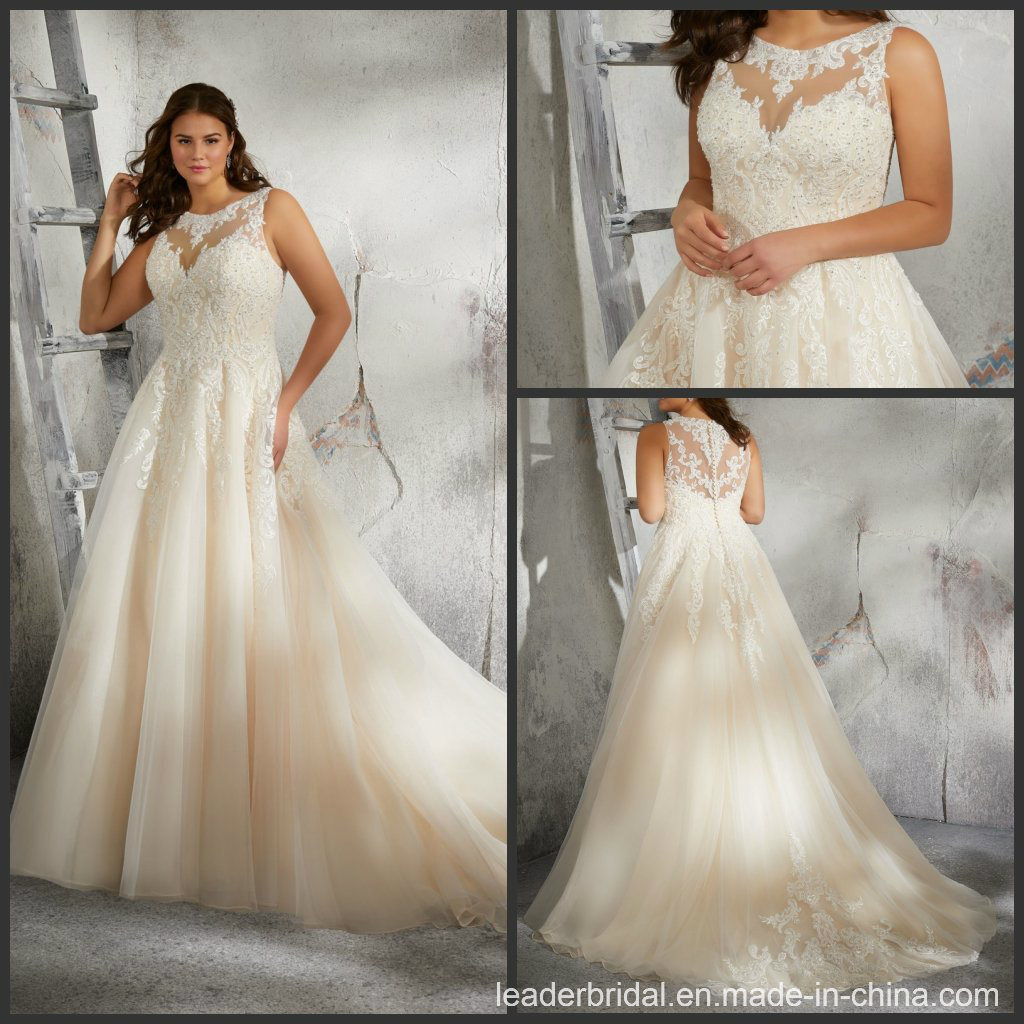 China Champagne Bridal Gowns Plus Size Lace Tulle Custom ...