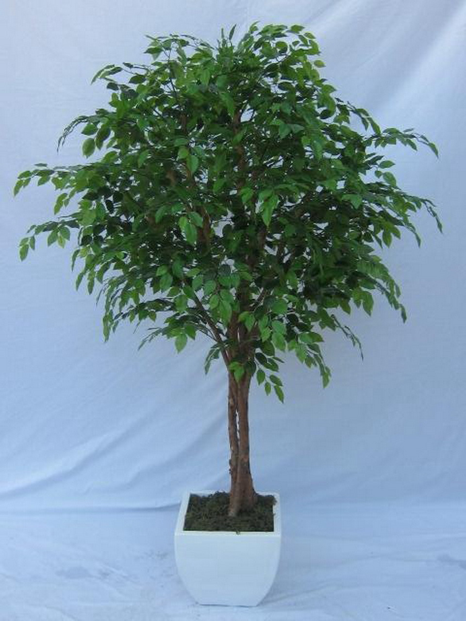 china high quality of artificial plants ficus tree gu-mx-mini-ficus