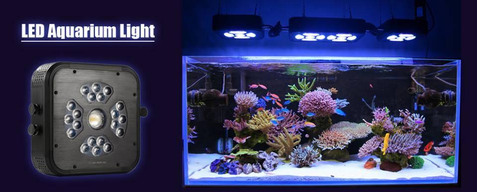 china programmable full spectrum coaral reef saltwater led aquarium