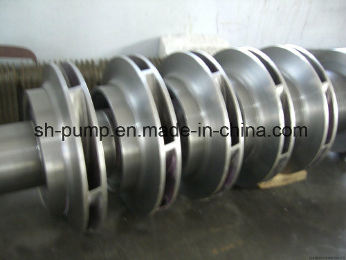 Vertical Multistage Industries Types Pump pictures & photos