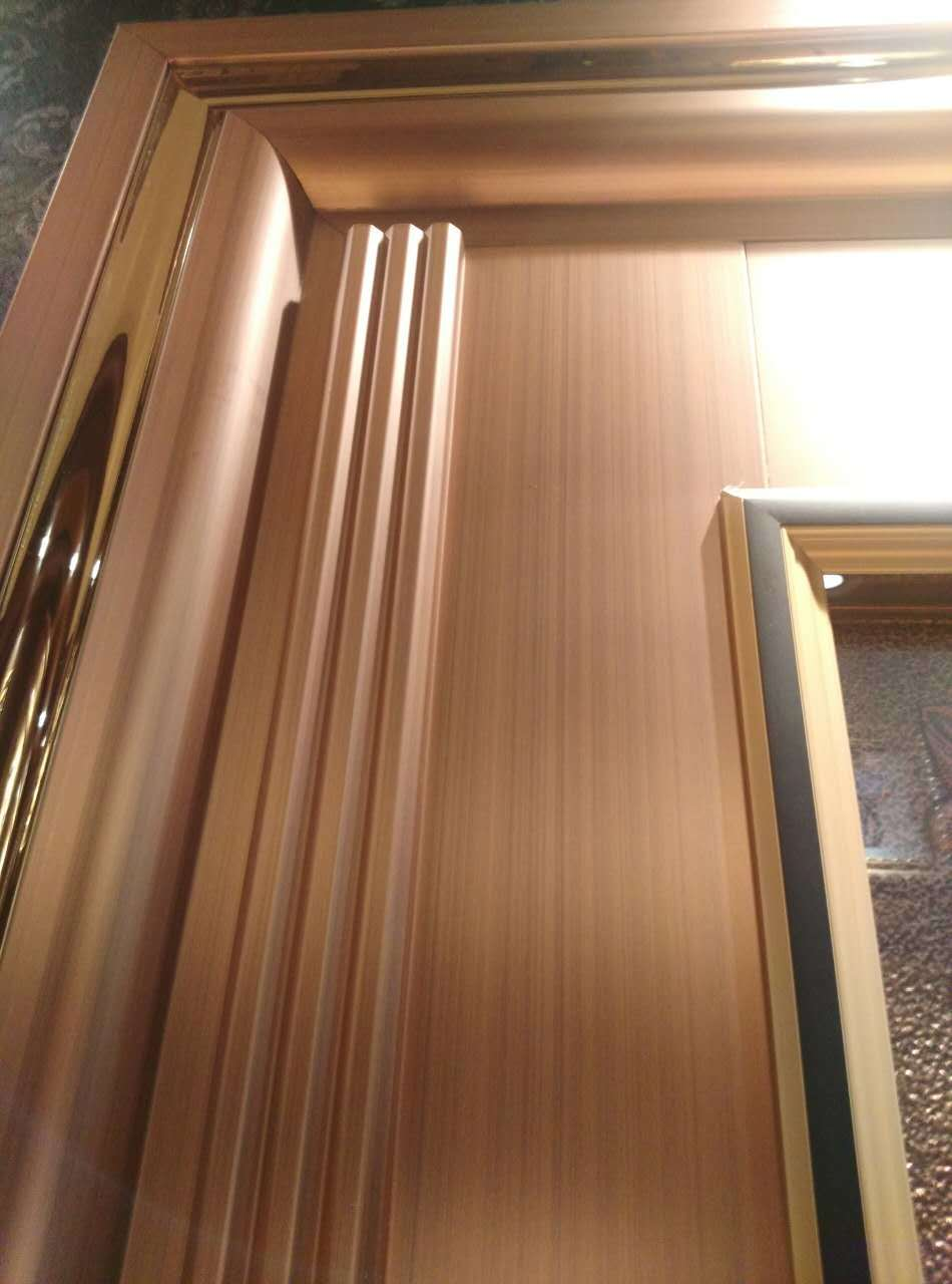 New Design Color Stainless Steel Door for Villa or Apartment (S-3035)