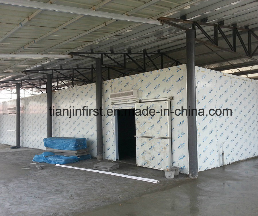 Fruit and Vegetable Cold Room Cold Storage for Seafood Fish pictures & photos