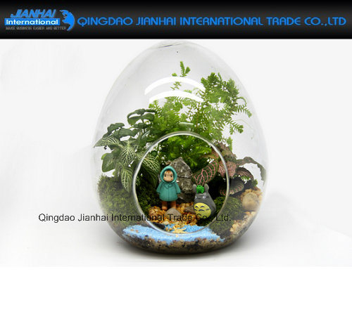 China Fairy Garden Decor Egg Shaped Clear Glass Vase Terrariums