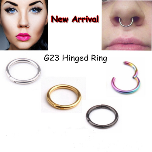 China 16g G23 Solid Titanium Pvd Segment Hinged Rings Labret Lip Fake Nose Ring Septum Piercing Nariz China Hinged