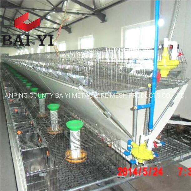 China Automatic Rabbit Farm Cage Design Supplies China Rabbit Farm Supplies Automatic Rabbit Farm Cage