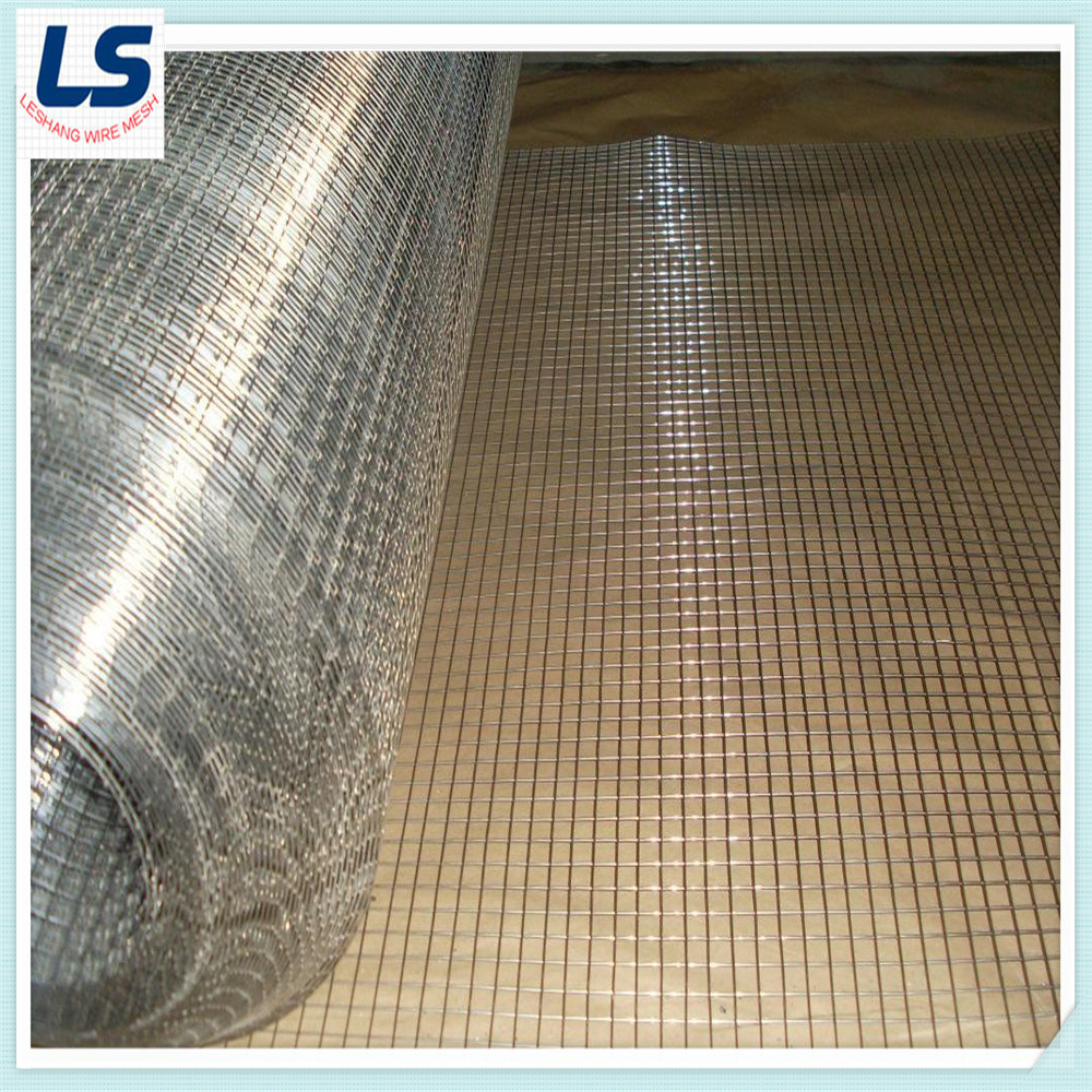 China High Quality Welded Wire Mesh 1/4\