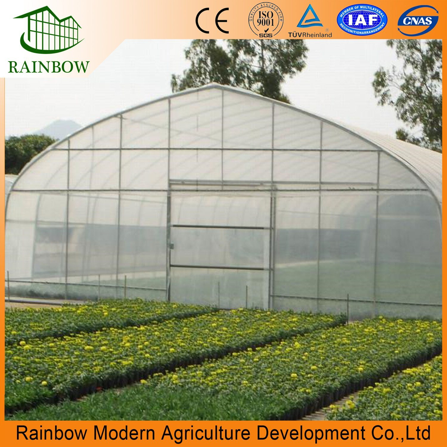 Stupendous China Arch Roof Type Tunnel Greenhouse Backyard Greenhouse Home Interior And Landscaping Palasignezvosmurscom