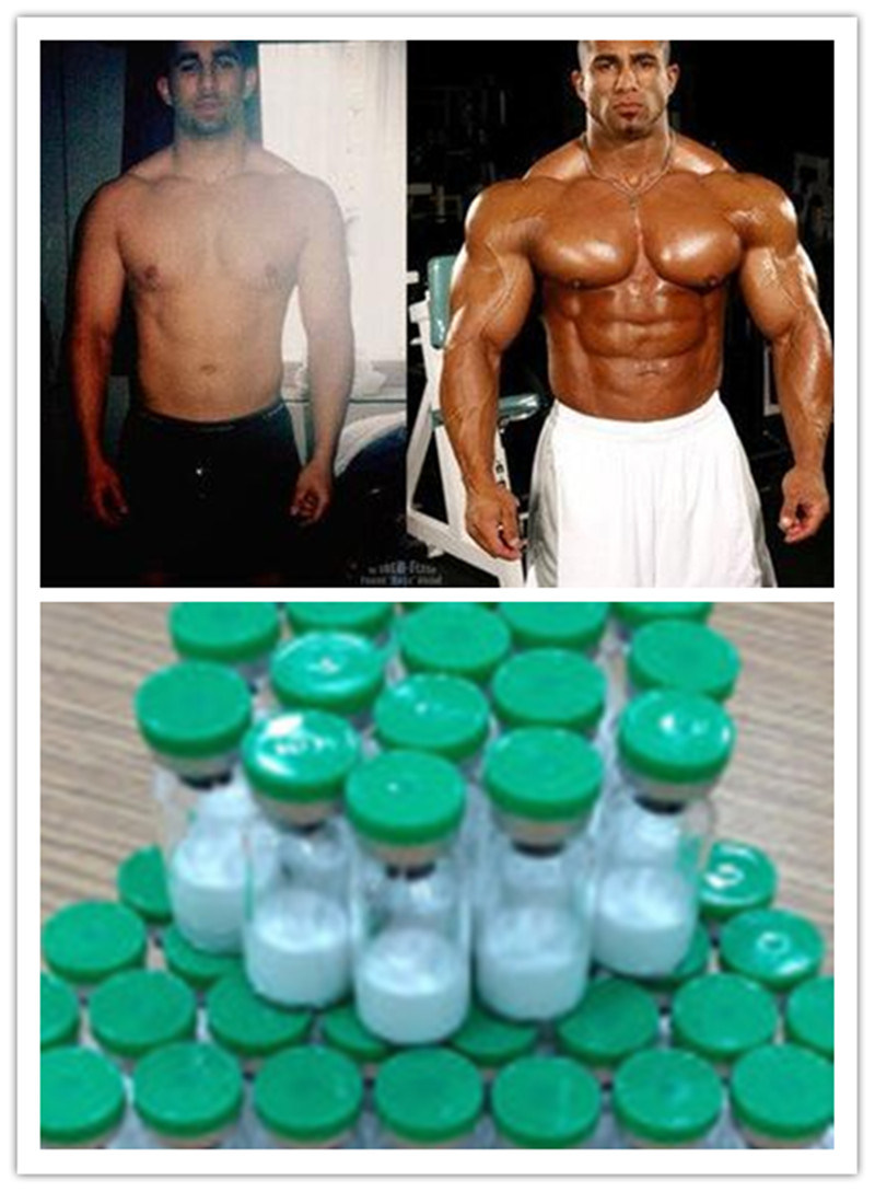 Synthetic Peptide Ipamorelin--Gh Releasing for Bodybuilders pictures & photos