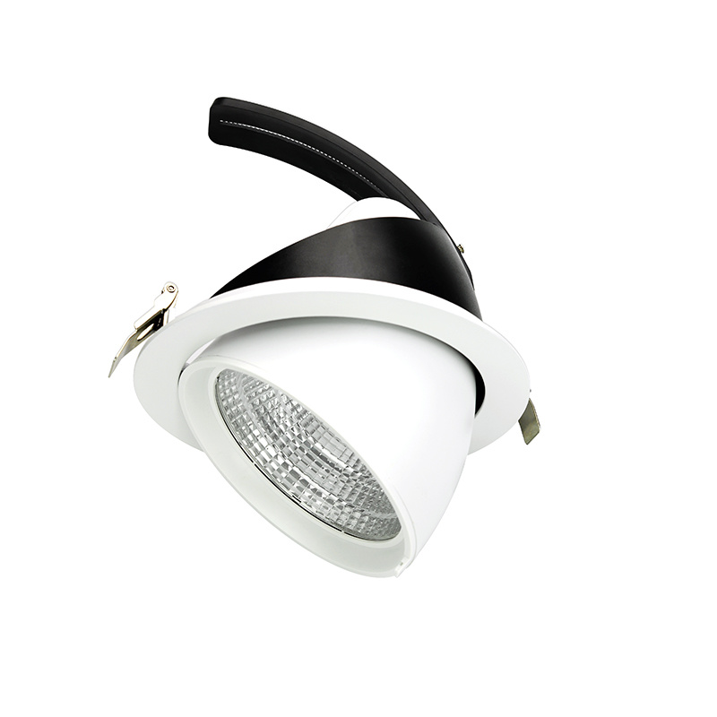 11/20/25/30/40W CREE LED Chip LED Ceiling Light Trunk Adjustable LED Spotlight pictures & photos