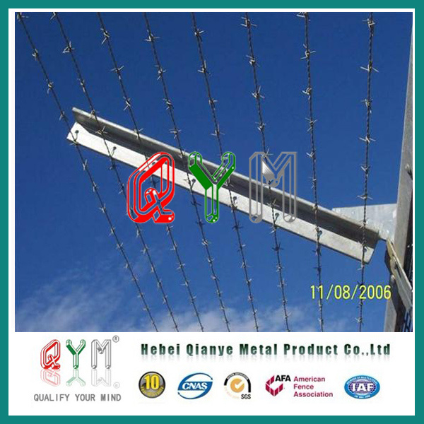 China Chain Link Fence with Cbt-65 Razor Barbed Wire Price - China ...