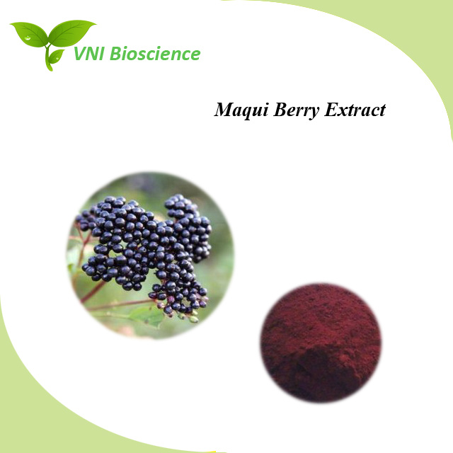 China High Quality Iso Certified 100 Natural Maqui Berry Extract