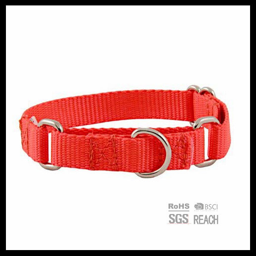 Hotsell Strong Durable Nylon Pet Dog Training Collar pictures & photos