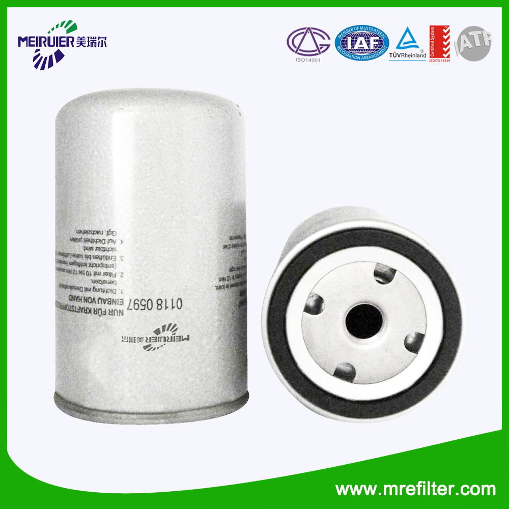 China Diesel Fuel Filter for Deutz/Iveco Car Engine 466987-5/01180597 -  China Filter, Lube Filter