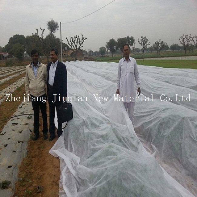 Disposable PP Spunbond Nonwoven Fabric for Plant Cover&Fruit Protection pictures & photos