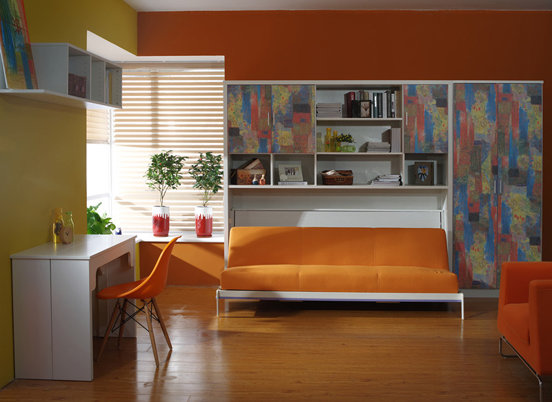 Horizotal Tilting Sofa Bed with Functional Bookcase