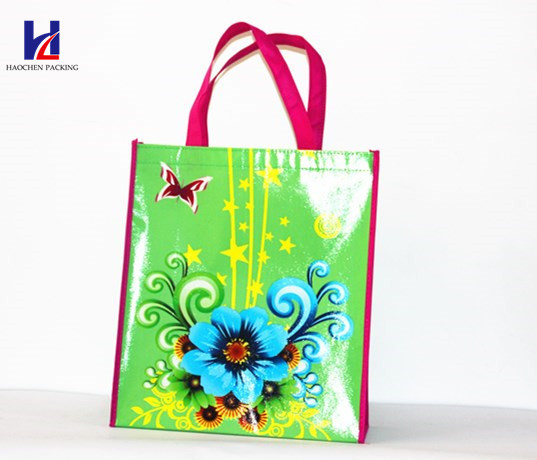 Fashion Non-Woven Fabric Gift Bags