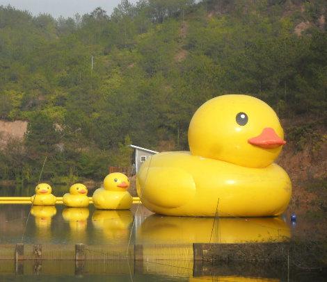 China Advertising Inflatable Big Yellow Duck - China Big Yellow Duck ...