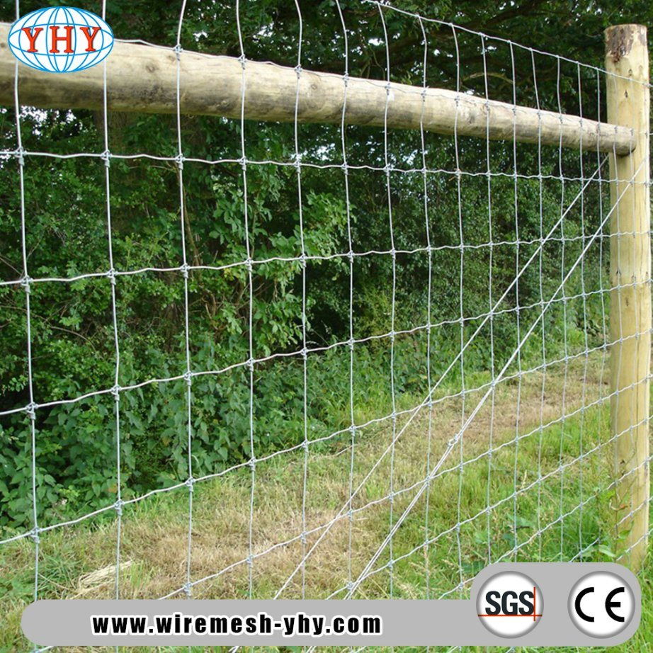 China 8 FT Electro Galvanized Woven Wire Deer and Wildlife Fence ...