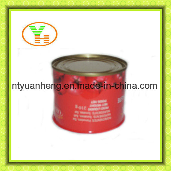 China Hot Selling Canned Tomato Sauce