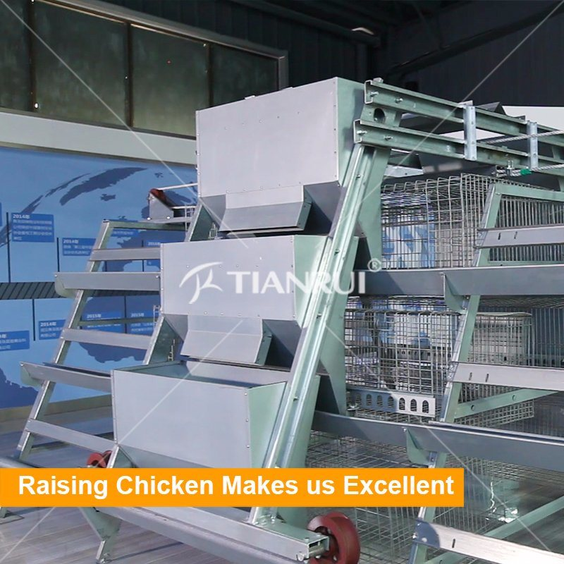 China Cheap Design Poultry Farm Equipment Vertical Type Wire Mesh ...