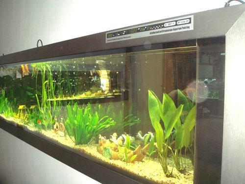 China Wall Mounted Fish Tank China Wall Mounted Aquarium