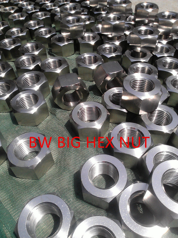 Stainless Steel Nut pictures & photos