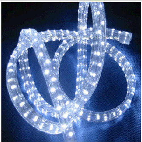 China customized 3 wire flat vertical led rope light factory price customized 3 wire flat vertical led rope light factory price aloadofball Images