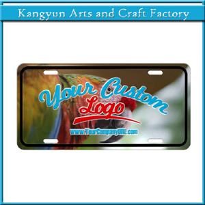 Hot Item Decorative Car Tag License Plate