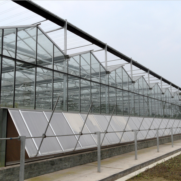 China Commercial Intelligent Multispan Glass Greenhouse pictures & photos