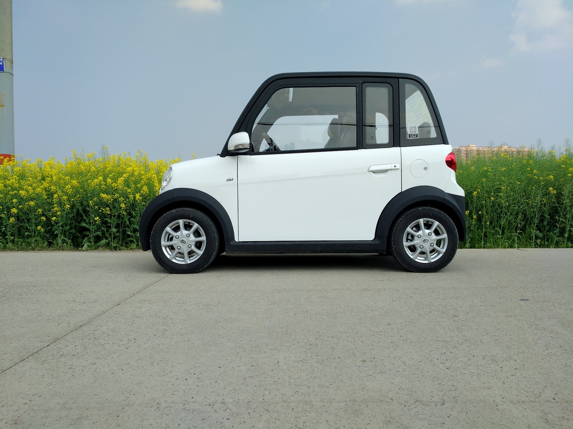 China Pure Electric Vehicle High Configuration 4 Seats Car