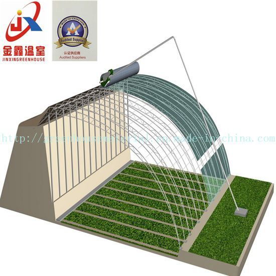 High Competitive and Experienced Solar Greenhouse