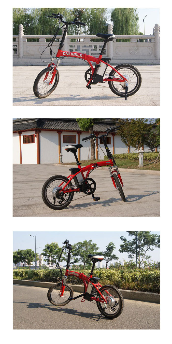 20′ 36V 250W Brushless Motor Aluminum Alloy Folding Electric Bicycle pictures & photos