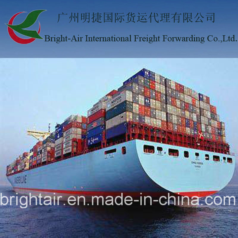 [Hot Item] Definition of Ship Cargo Sea Freight Broker From Guangzhou,  China to Tocopilla, Chile