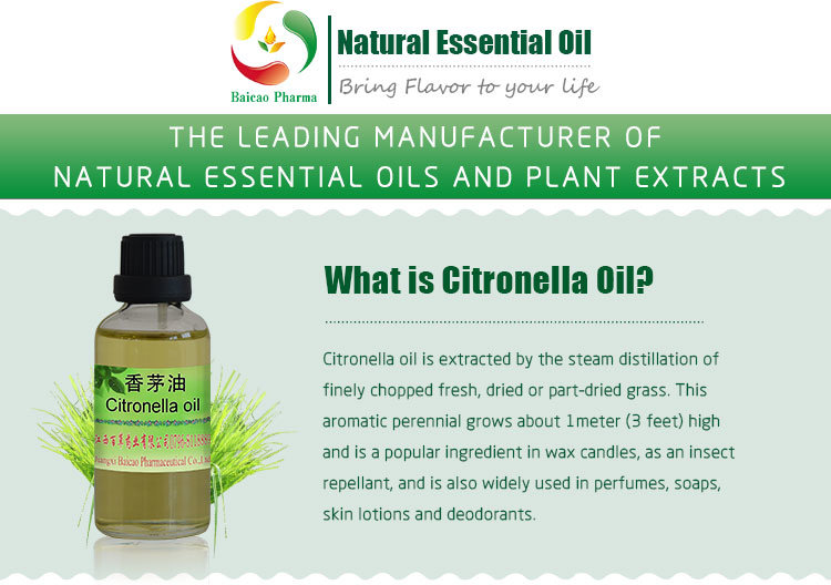 China Bulk Citronella Grass Extraction Oil For Insecticide Natural
