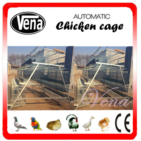 Automatic Poultry Cage for Chicken Use