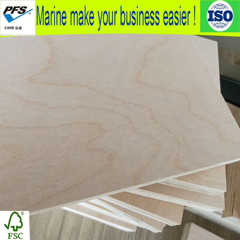 18mm White Birch Plywood For Furniture With High Quality