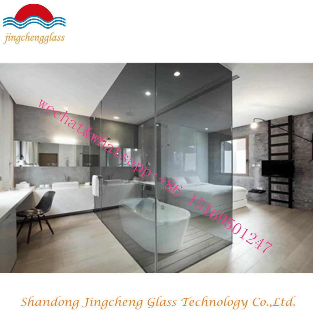 China Clearcolorgrey Tempered Glass Doorglass Partition China