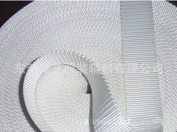 Professional Car Safety Nylon Webbing