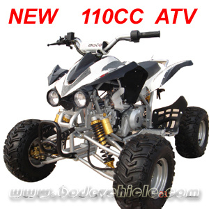 China New 110cc Atv. Quad. Kawasaki 110cc Atv (MC-314) - China 110cc