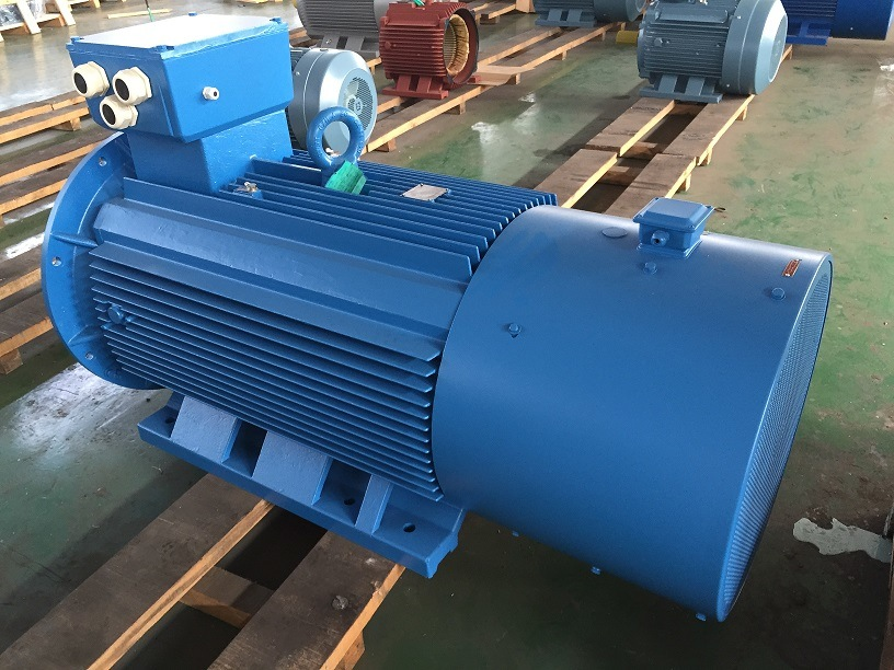 Electric Motor/ AC Motor/ Hv Motor/Inducton Motor pictures & photos